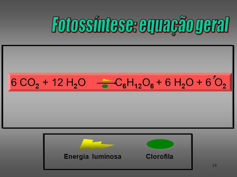 18 ClorofilaEnergia luminosa 6 CO 2 + 12 H 2 O C 6 H 12 O 6 + 6 H 2 O + 6 O 2