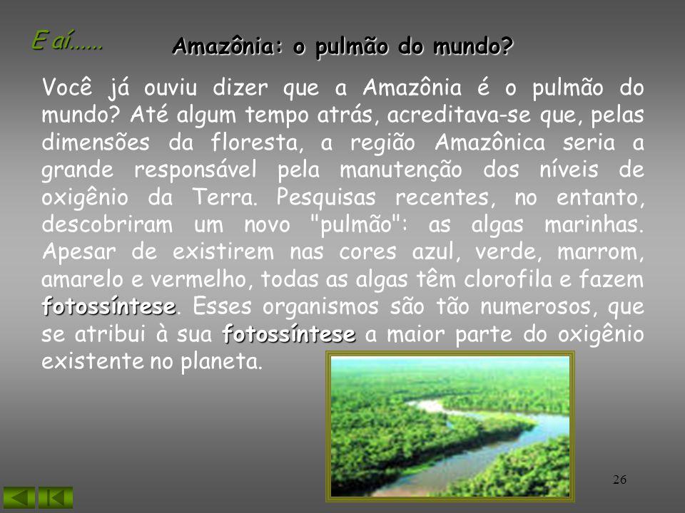 26 Amazônia: o pulmão do mundo? Você já ouviu dizer que a Amazônia é o pulmão do mundo? Até algum tempo atrás, acreditava-se que, pelas dimensões da f
