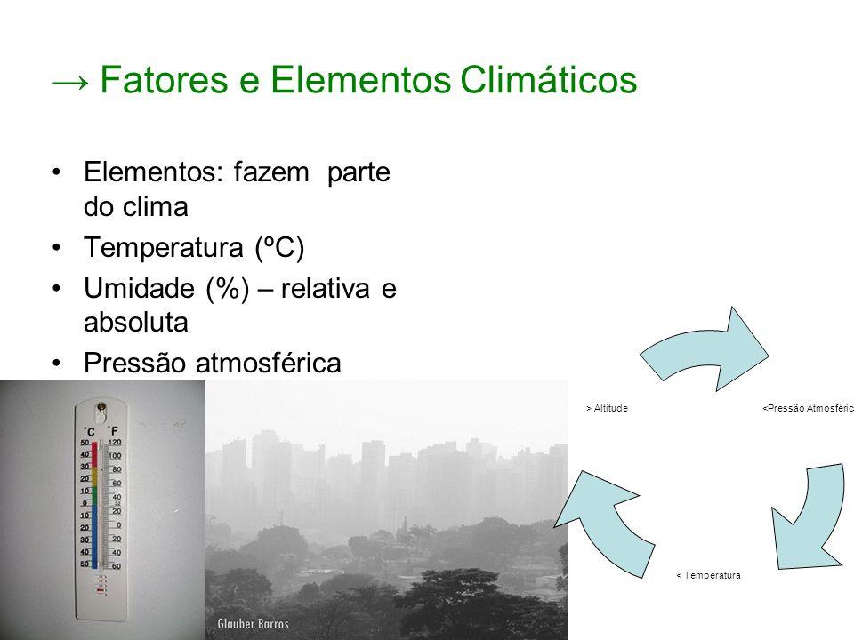 Fatores e Elementos Climáticos Elementos: fazem parte do clima Temperatura (ºC) Umidade (%) – relativa e absoluta Pressão atmosférica (atm) – quanto menor a pressão, em geral, menores serão as temperaturas.