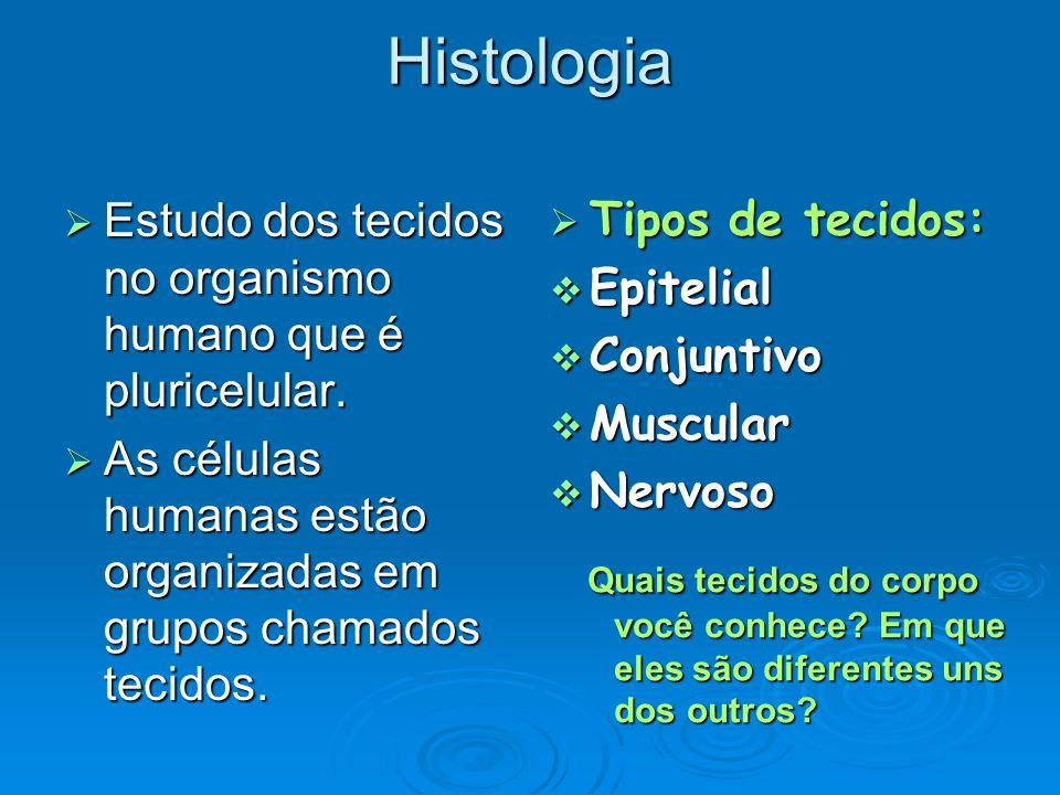 Histologia Estudo dos tecidos no organismo humano que é pluricelular. Estudo dos tecidos no organismo humano que é pluricelular. As células humanas es