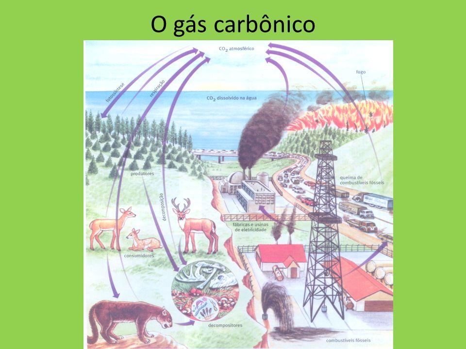 O gás carbônico não tem cor, não tem cheiro e não é combustível nem comburente.