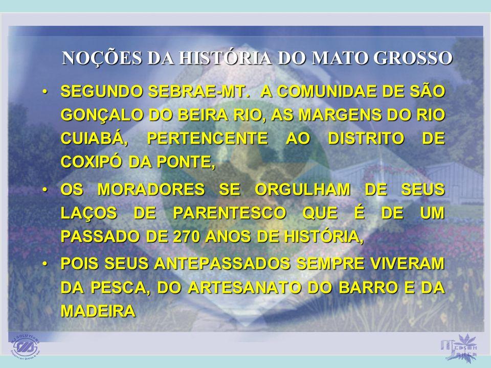 SEGUNDO SEBRAE-MT. A COMUNIDAE DE SÃO GONÇALO DO BEIRA RIO, AS MARGENS DO RIO CUIABÁ, PERTENCENTE AO DISTRITO DE COXIPÓ DA PONTE,SEGUNDO SEBRAE-MT. A