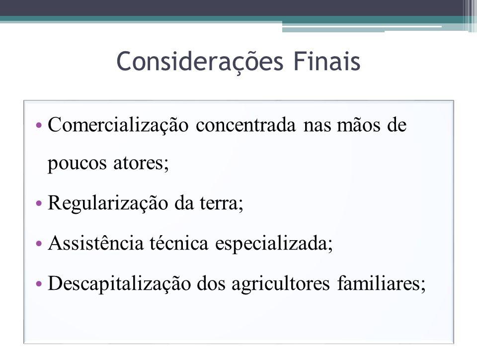 Considerações Finais Comercialização concentrada nas mãos de poucos atores; Regularização da terra; Assistência técnica especializada; Descapitalizaçã