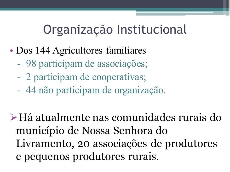 Organização Institucional Dos 144 Agricultores familiares - 98 participam de associações; - 2 participam de cooperativas; - 44 não participam de organ