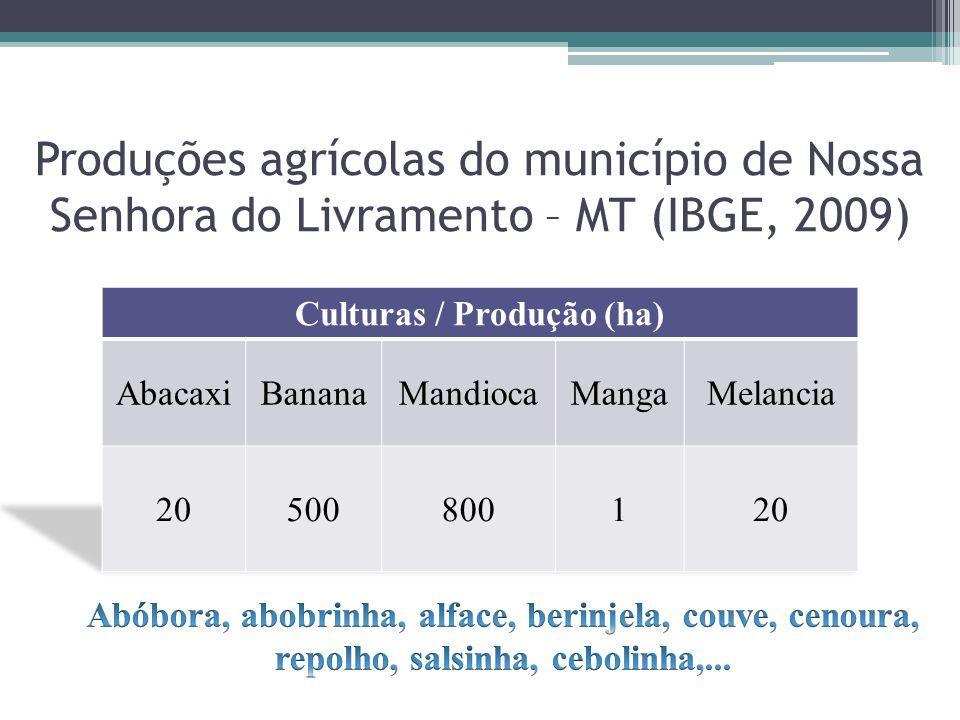 Produções agrícolas do município de Nossa Senhora do Livramento – MT (IBGE, 2009)
