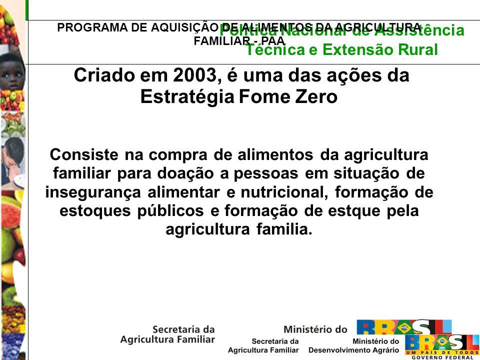 Política Nacional de Assistência Técnica e Extensão Rural PROGRAMA DE AQUISIÇÃO DE ALIMENTOS DA AGRICULTURA FAMILIAR - PAA Criado em 2003, é uma das a