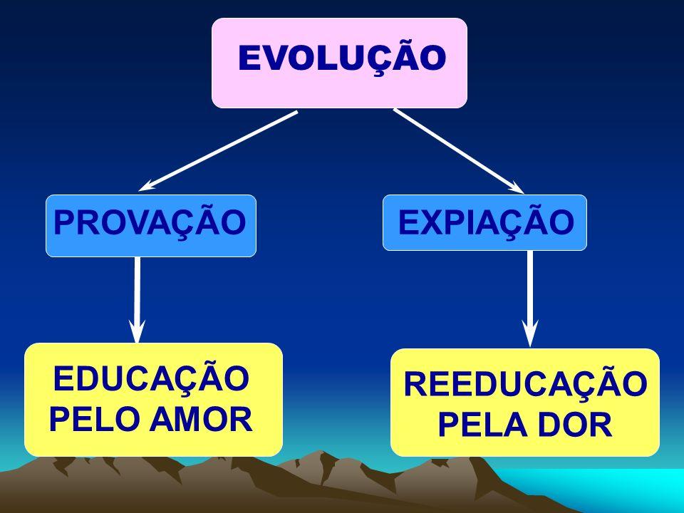 EVOLUÇÃO PROVAÇÃOEXPIAÇÃO EDUCAÇÃO PELO AMOR REEDUCAÇÃO PELA DOR