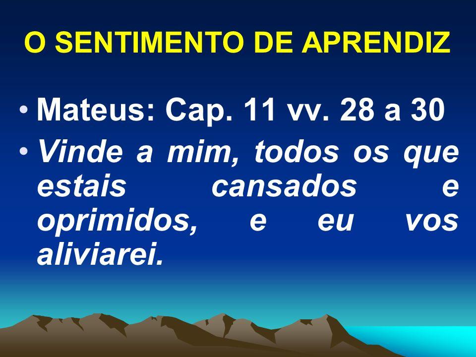 O SENTIMENTO DE APRENDIZ Mateus: Cap. 11 vv. 28 a 30 Vinde a mim, todos os que estais cansados e oprimidos, e eu vos aliviarei.