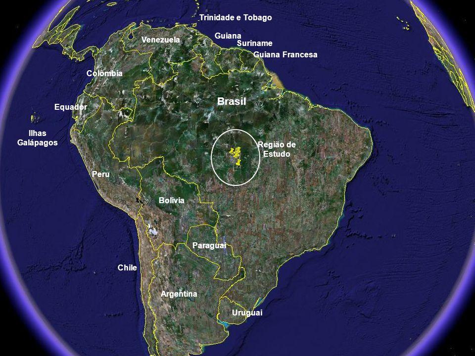 Argentina Uruguai Paraguai Bolívia Chile Peru Equador Colômbia Venezuela Guiana Suriname Guiana Francesa Trinidade e Tobago Brasil Região de Estudo Il