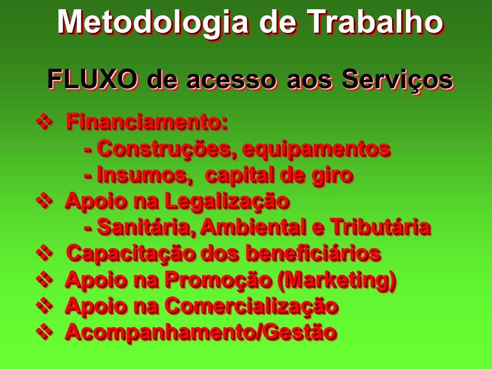 Metodologia de Trabalho FLUXO de acesso aos Serviços Financiamento: Financiamento: - Construções, equipamentos - Insumos, capital de giro Apoio na Leg