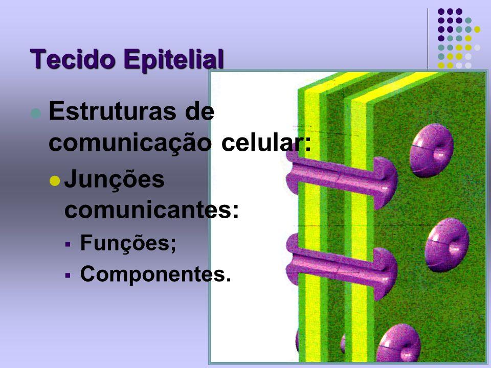 Tecido Epitelial Estruturas de comunicação celular: Junções comunicantes: Funções; Componentes.
