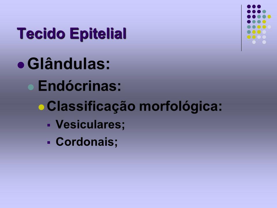 Tecido Epitelial Glândulas: Endócrinas: Classificação morfológica: Vesiculares; Cordonais;