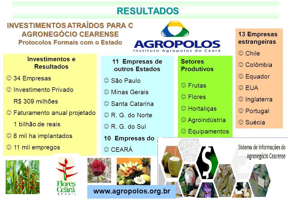 RESULTADOS INVESTIMENTOS ATRAÍDOS PARA O AGRONEGÓCIO CEARENSE Protocolos Formais com o Estado 13 Empresas estrangeiras Chile Colômbia Equador EUA Ingl
