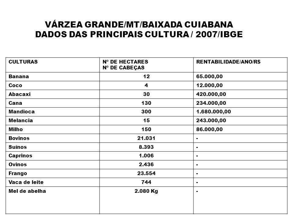 VÁRZEA GRANDE/MT/BAIXADA CUIABANA DADOS DAS PRINCIPAIS CULTURA / 2007/IBGE CULTURASNº DE HECTARES Nº DE CABEÇAS RENTABILIDADE/ANO/R$ Banana1265.000,00