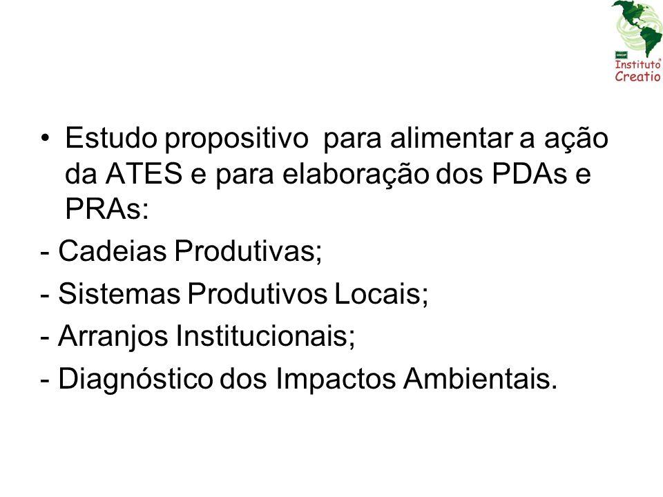 Estudo propositivo para alimentar a ação da ATES e para elaboração dos PDAs e PRAs: - Cadeias Produtivas; - Sistemas Produtivos Locais; - Arranjos Ins