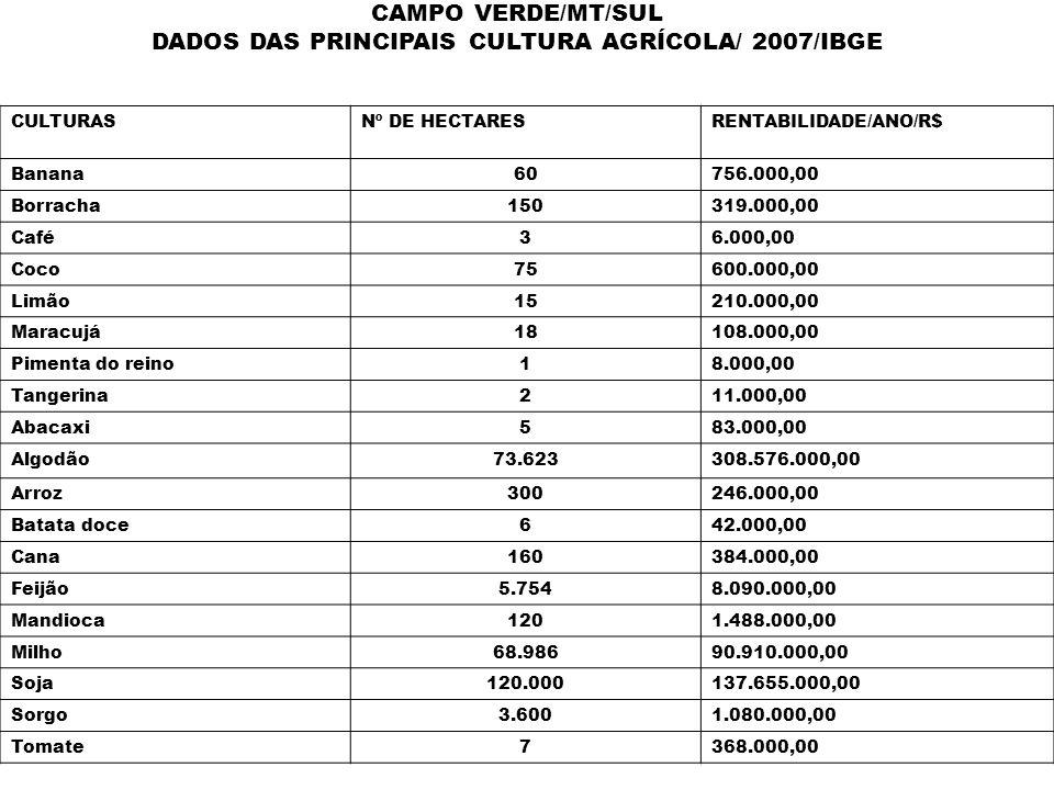 CAMPO VERDE/MT/SUL DADOS DAS PRINCIPAIS CULTURA AGRÍCOLA/ 2007/IBGE CULTURASNº DE HECTARESRENTABILIDADE/ANO/R$ Banana60756.000,00 Borracha150319.000,0