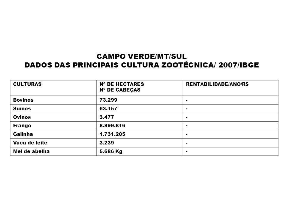 CAMPO VERDE/MT/SUL DADOS DAS PRINCIPAIS CULTURA ZOOTÉCNICA/ 2007/IBGE CULTURASNº DE HECTARES Nº DE CABEÇAS RENTABILIDADE/ANO/R$ Bovinos73.299- Suínos6