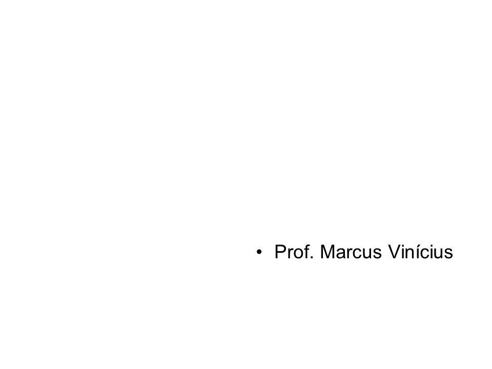 Prof. Marcus Vinícius