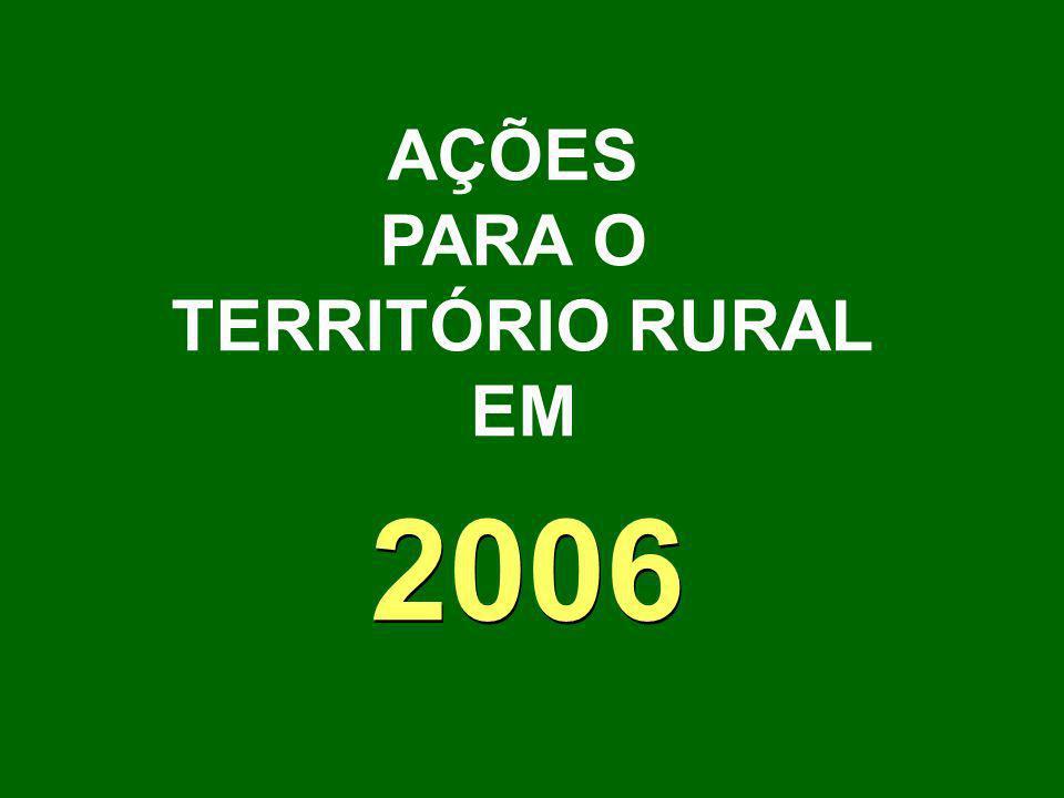AÇÕES PARA O TERRITÓRIO RURAL EM 2006