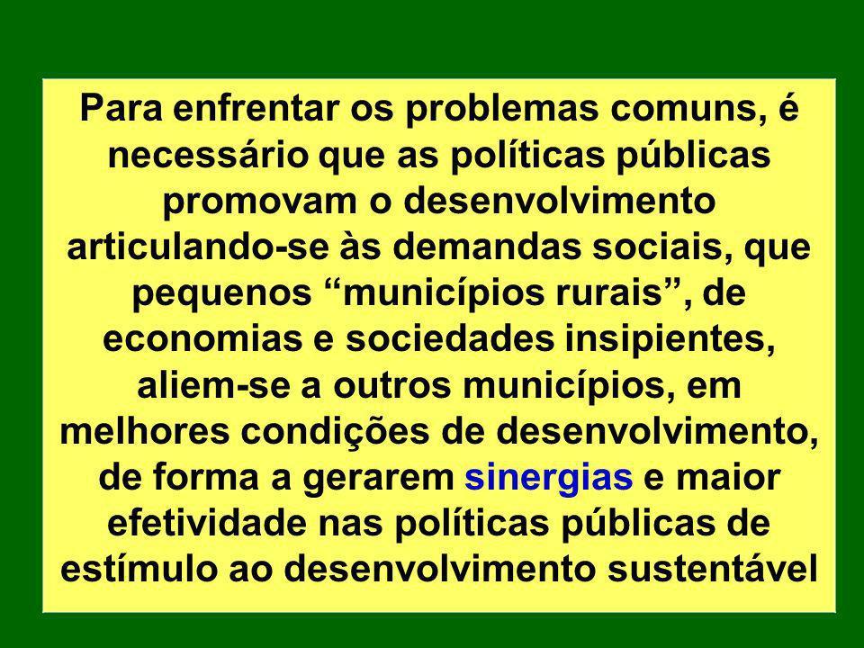 Para enfrentar os problemas comuns, é necessário que as políticas públicas promovam o desenvolvimento articulando-se às demandas sociais, que pequenos