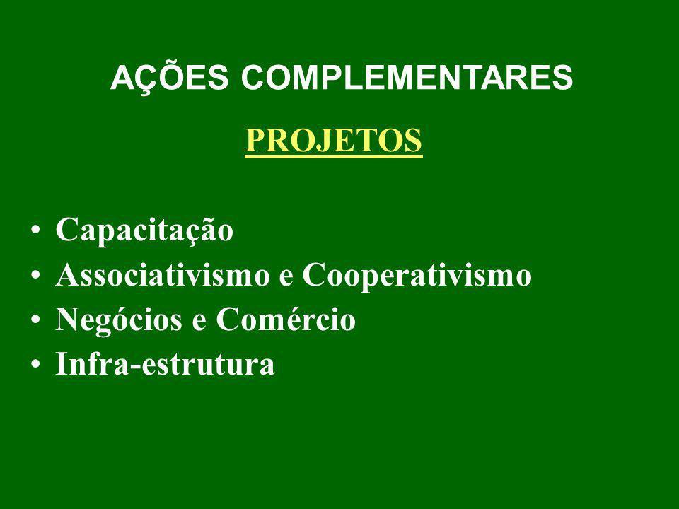 AÇÕES COMPLEMENTARES PROJETOS Capacitação Associativismo e Cooperativismo Negócios e Comércio Infra-estrutura