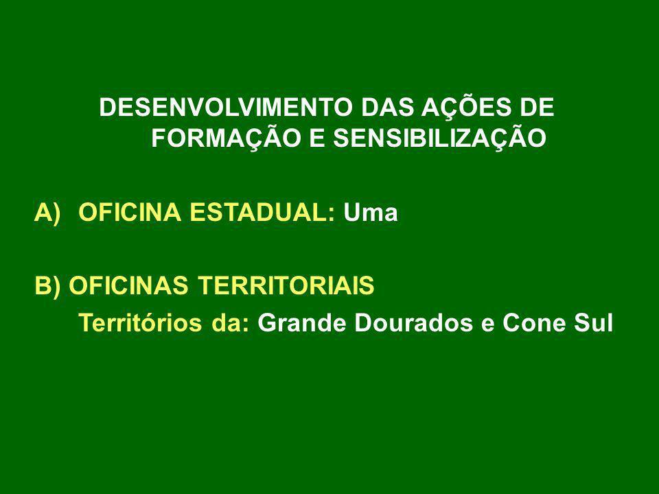DESENVOLVIMENTO DAS AÇÕES DE FORMAÇÃO E SENSIBILIZAÇÃO A)OFICINA ESTADUAL: Uma B) OFICINAS TERRITORIAIS Territórios da: Grande Dourados e Cone Sul