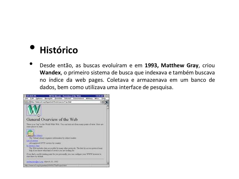 Histórico Desde então, as buscas evoluíram e em 1993, Matthew Gray, criou Wandex, o primeiro sistema de busca que indexava e também buscava no índice