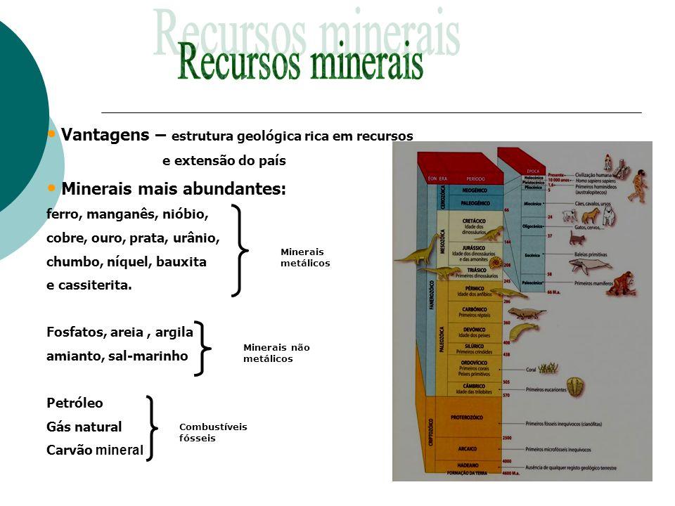 Vantagens – estrutura geológica rica em recursos e extensão do país Minerais mais abundantes: ferro, manganês, nióbio, cobre, ouro, prata, urânio, chu