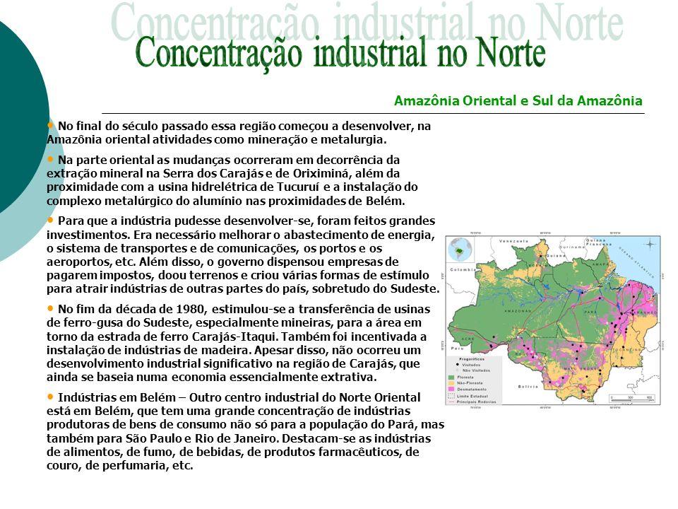 No final do século passado essa região começou a desenvolver, na Amazônia oriental atividades como mineração e metalurgia. Na parte oriental as mudanç