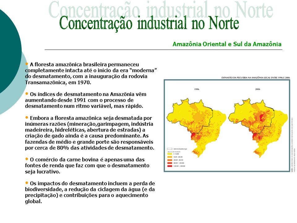 A floresta amazônica brasileira permaneceu completamente intacta até o início da era moderna do desmatamento, com a inauguração da rodovia Transamazôn