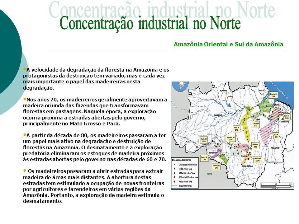 A velocidade da degradação da floresta na Amazônia e os protagonistas da destruição têm variado, mas é cada vez mais importante o papel das madeireira