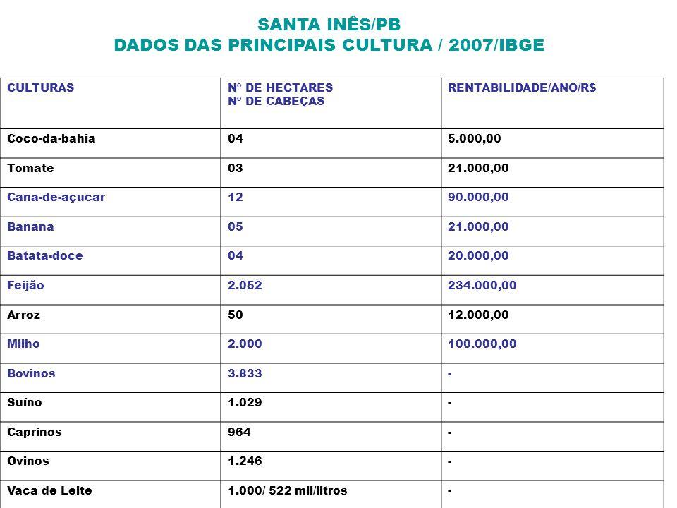 SANTA INÊS/PB DADOS DAS PRINCIPAIS CULTURA / 2007/IBGE CULTURASNº DE HECTARES Nº DE CABEÇAS RENTABILIDADE/ANO/R$ Coco-da-bahia045.000,00 Tomate0321.00