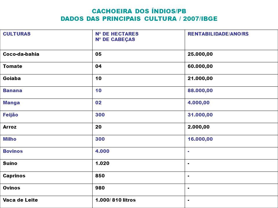 CACHOEIRA DOS ÍNDIOS/PB DADOS DAS PRINCIPAIS CULTURA / 2007/IBGE CULTURASNº DE HECTARES Nº DE CABEÇAS RENTABILIDADE/ANO/R$ Coco-da-bahia0525.000,00 To