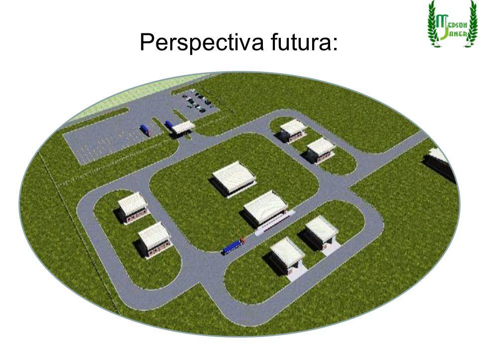 Perspectiva futura: