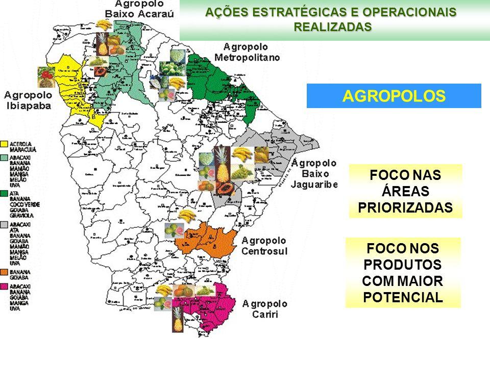 AGROPOLOS FOCO NAS ÁREAS PRIORIZADAS FOCO NOS PRODUTOS COM MAIOR POTENCIAL AÇÕES ESTRATÉGICAS E OPERACIONAIS REALIZADAS
