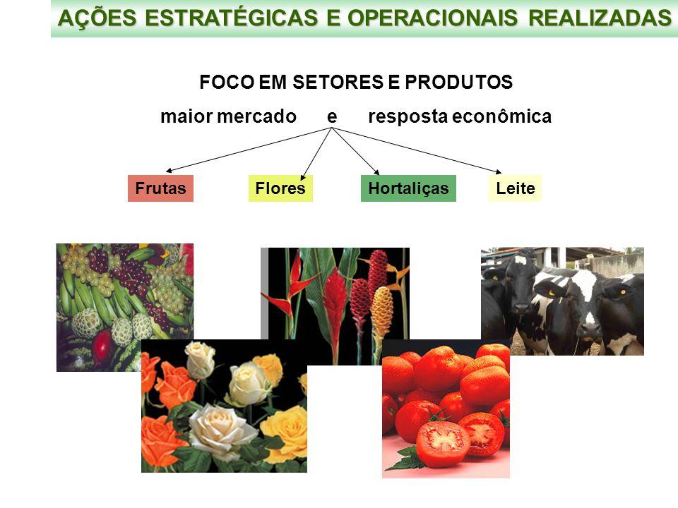 FOCO EM SETORES E PRODUTOS maior mercado e resposta econômica AÇÕES ESTRATÉGICAS E OPERACIONAIS REALIZADAS FrutasFloresHortaliçasLeite