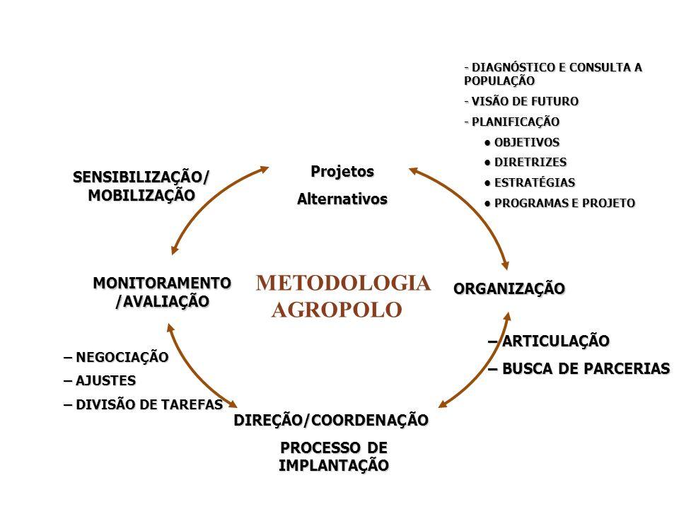METODOLOGIA AGROPOLO ProjetosAlternativos ORGANIZAÇÃO DIREÇÃO/COORDENAÇÃO PROCESSO DE IMPLANTAÇÃO MONITORAMENTO /AVALIAÇÃO SENSIBILIZAÇÃO/ MOBILIZAÇÃO