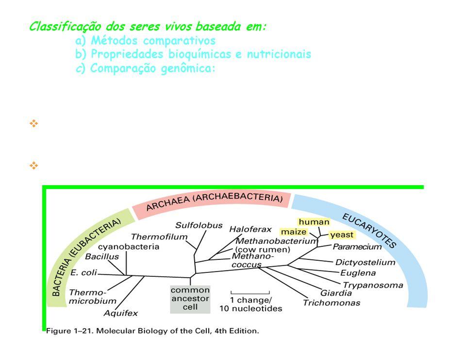 Plastos São organelas típicas das células vegetais com membrana dupla, com presença de DNA; Cromoplastos = contêm pigmentos Leucoplastos = armazenam material de reserva ( incolores) Estrutura: Envelope, os tilacóides e o estroma; Estroma=região preenchida com material viscoso; Tilacóides=Vesículas achatadas, mergulhadas no estroma; Granum= pilha de tilacóides Grana= conj.
