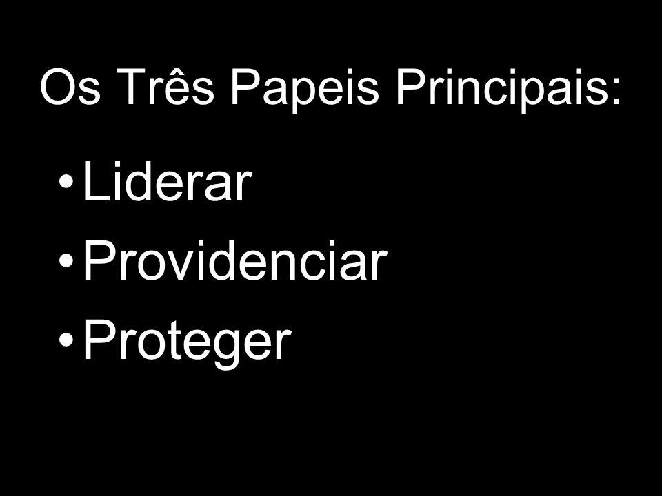 Os Três Papeis Principais: Liderar Providenciar Proteger