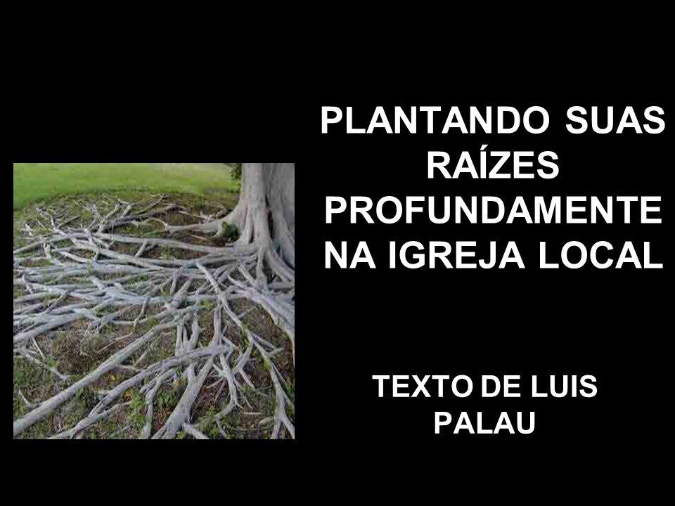 PLANTANDO SUAS RAÍZES PROFUNDAMENTE NA IGREJA LOCAL TEXTO DE LUIS PALAU
