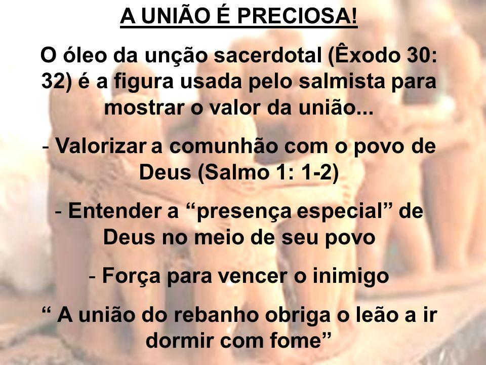 A UNIÃO É PRECIOSA! O óleo da unção sacerdotal (Êxodo 30: 32) é a figura usada pelo salmista para mostrar o valor da união... - Valorizar a comunhão c