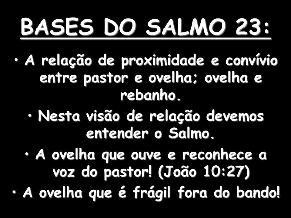 BASES DO SALMO 23: A relação de proximidade e convívio entre pastor e ovelha; ovelha e rebanho.A relação de proximidade e convívio entre pastor e ovelha; ovelha e rebanho.