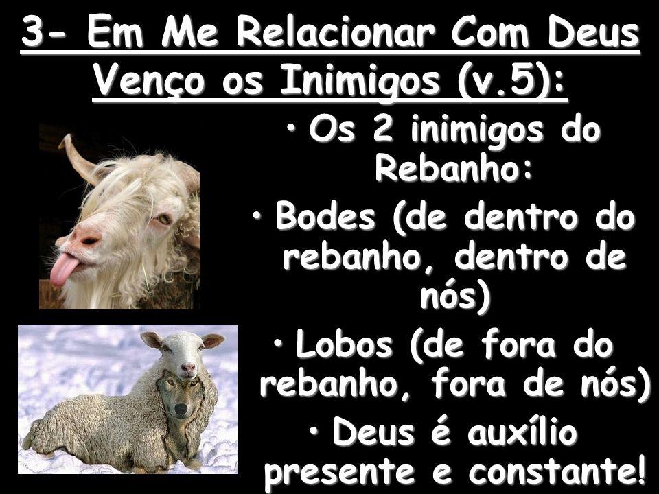 3- Em Me Relacionar Com Deus Venço os Inimigos (v.5): Os 2 inimigos do Rebanho:Os 2 inimigos do Rebanho: Bodes (de dentro do rebanho, dentro de nós)Bodes (de dentro do rebanho, dentro de nós) Lobos (de fora do rebanho, fora de nós)Lobos (de fora do rebanho, fora de nós) Deus é auxílio presente e constante!Deus é auxílio presente e constante!