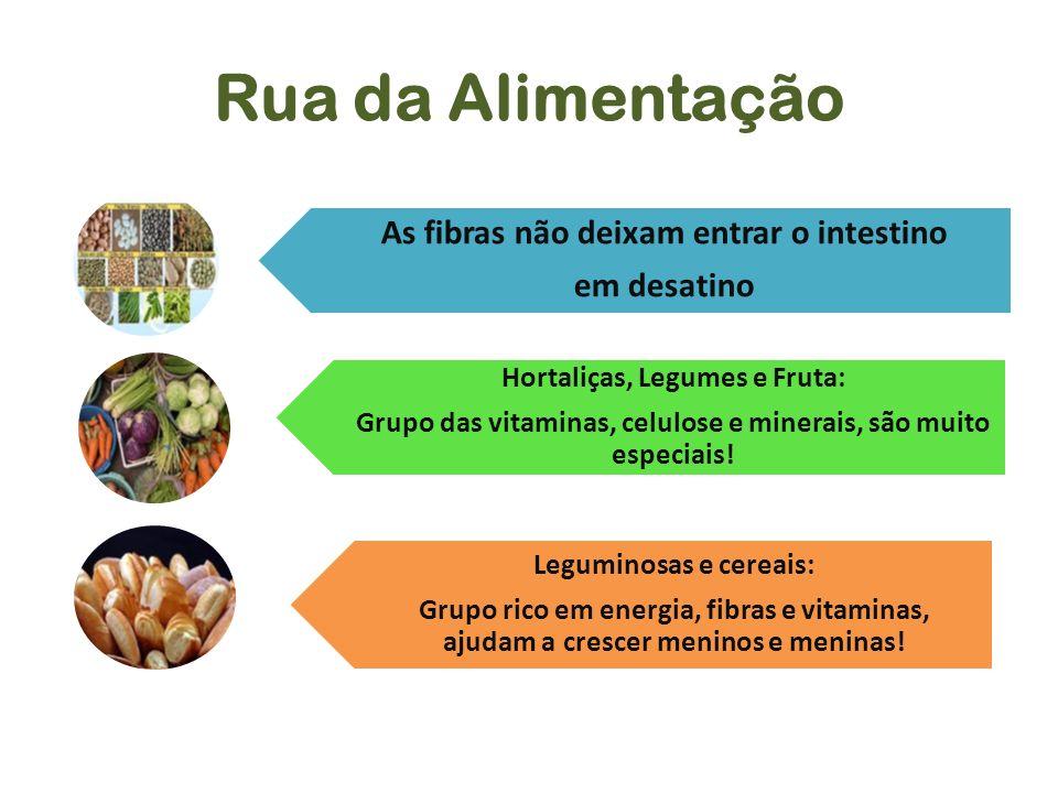 Rua da Alimentação As fibras não deixam entrar o intestino em desatino Hortaliças, Legumes e Fruta: Grupo das vitaminas, celulose e minerais, são muit