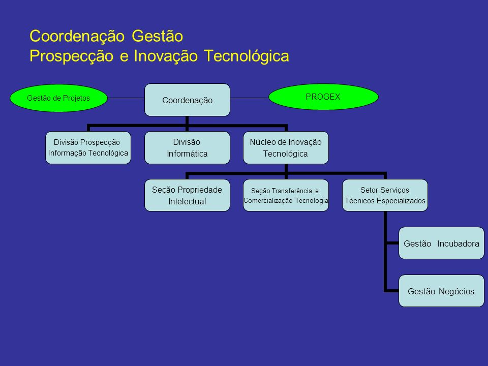 Coordenação Gestão Prospecção e Inovação Tecnológica Coordenação Divisão Prospecção Informação Tecnológica Divisão Informática Núcleo de Inovação Tecn