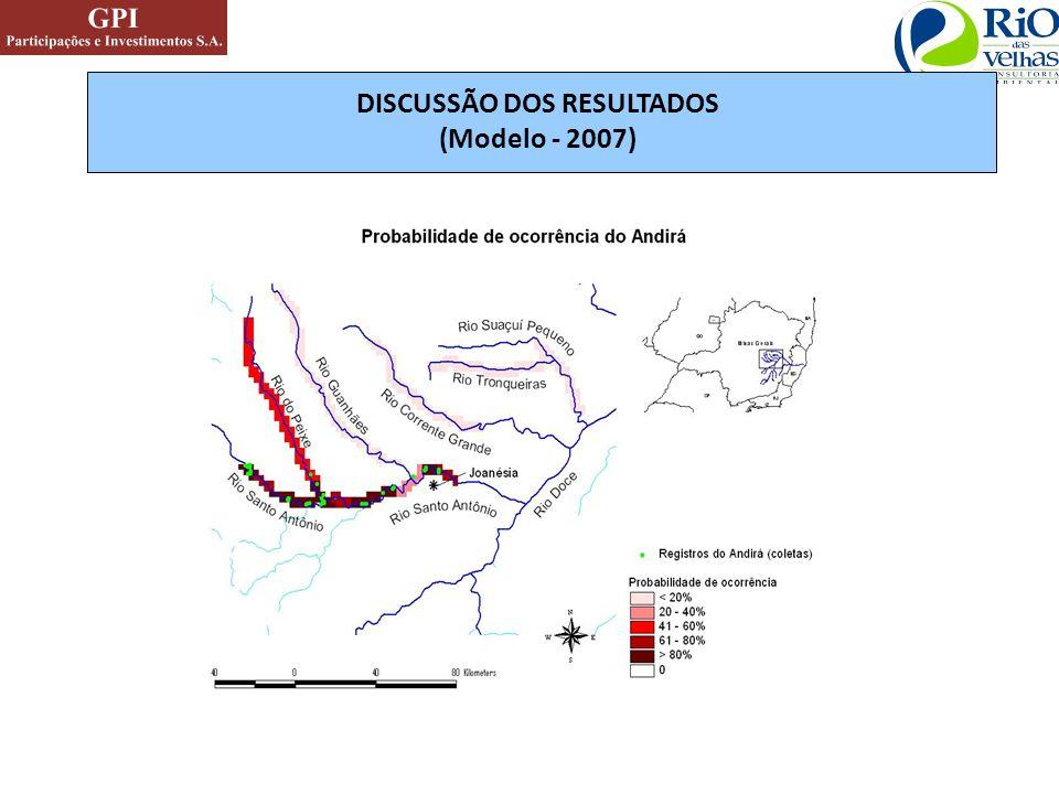 DISCUSSÃO DOS RESULTADOS (Modelo - 2007)