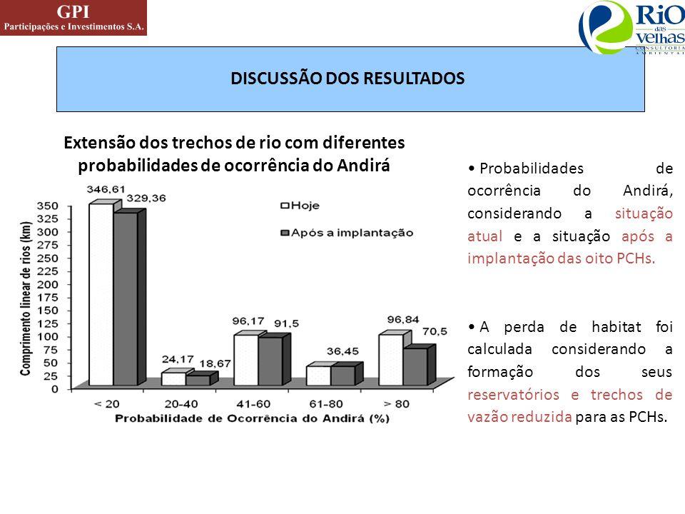 Extensão dos trechos de rio com diferentes probabilidades de ocorrência do Andirá DISCUSSÃO DOS RESULTADOS Probabilidades de ocorrência do Andirá, con