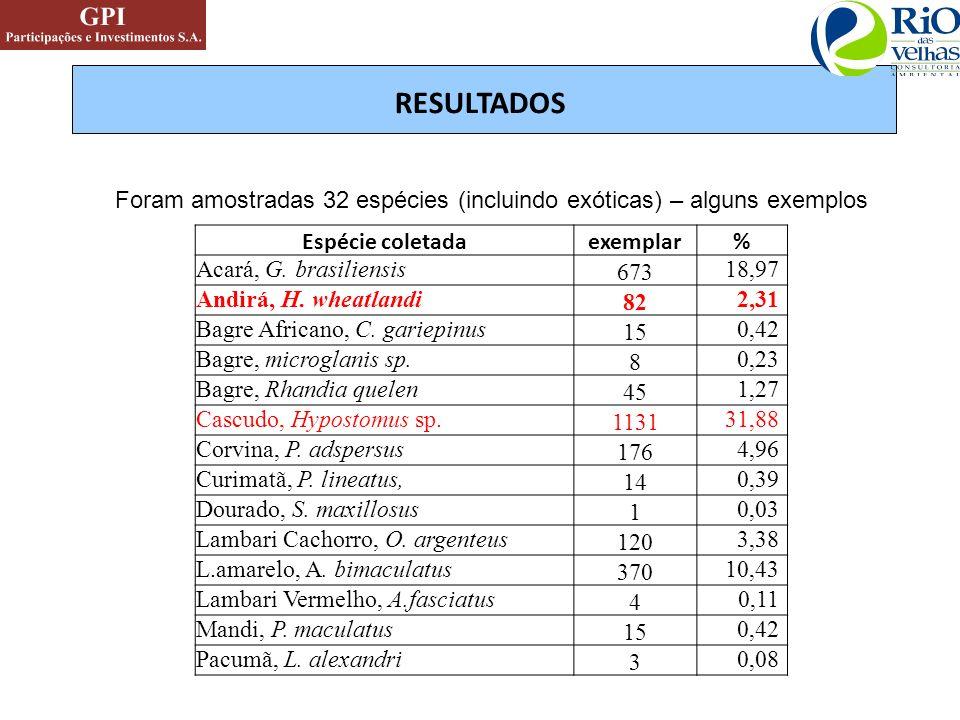 RESULTADOS Espécie coletadaexemplar% Acará, G. brasiliensis 673 18,97 Andirá, H. wheatlandi 82 2,31 Bagre Africano, C. gariepinus 15 0,42 Bagre, micro