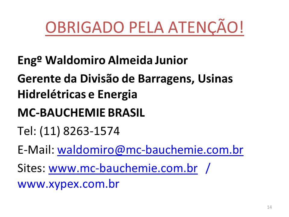 14 OBRIGADO PELA ATENÇÃO! Engº Waldomiro Almeida Junior Gerente da Divisão de Barragens, Usinas Hidrelétricas e Energia MC-BAUCHEMIE BRASIL Tel: (11)