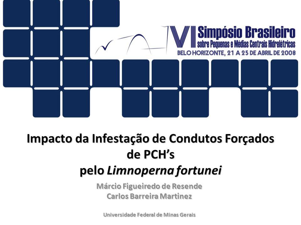 Impacto da Infestação de Condutos Forçados de PCHs pelo Limnoperna fortunei Márcio Figueiredo de Resende Carlos Barreira Martinez Universidade Federal